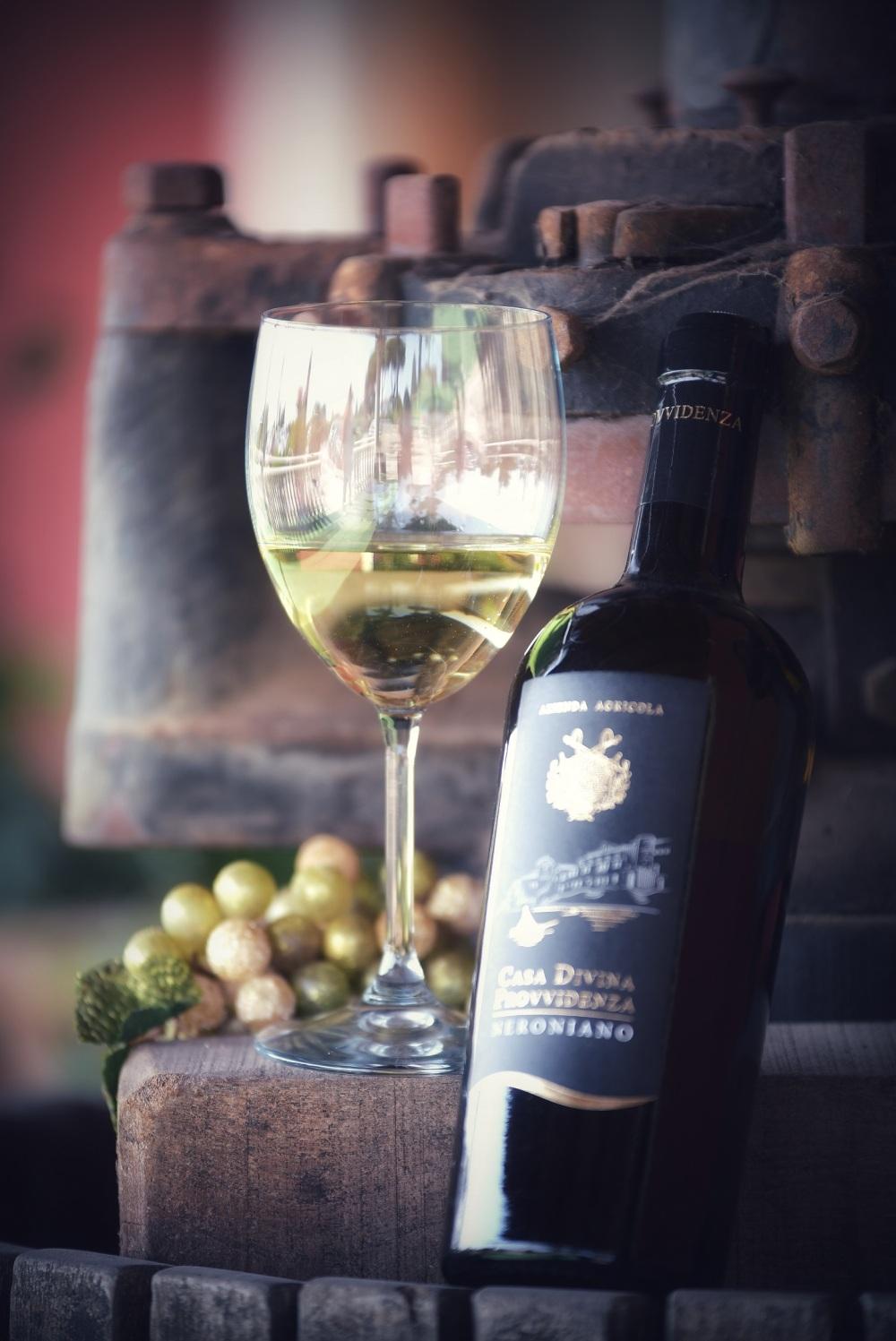 02 Nettuno Wine Festival