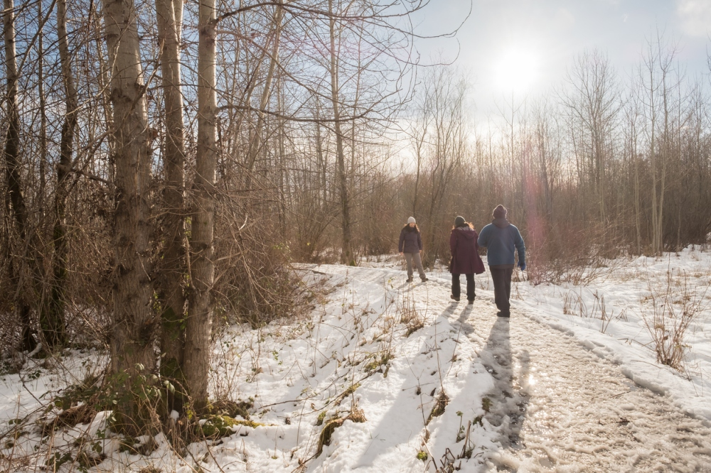 Family Enjoying Sunny Winter Walk in Snowy Wilderness Park