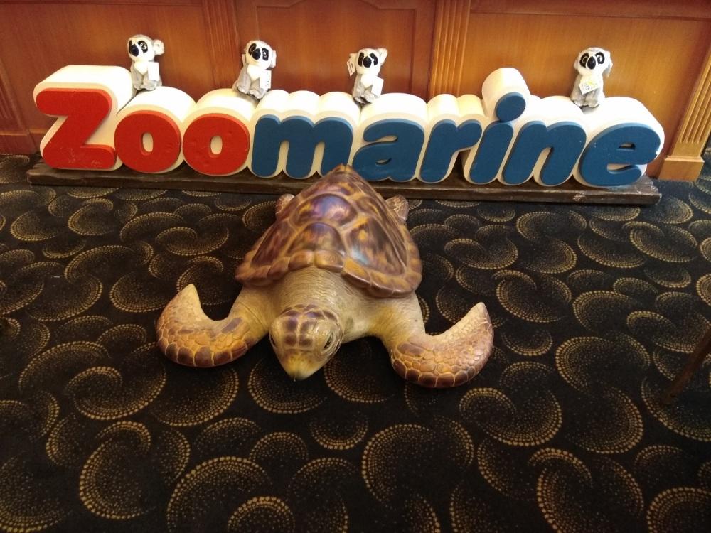 Tartaruga conferenza