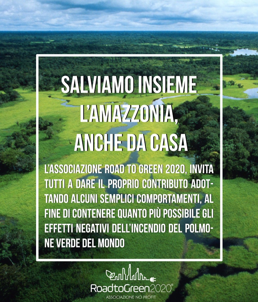 Road to green 2020 - Salviamo l'Amazzonia