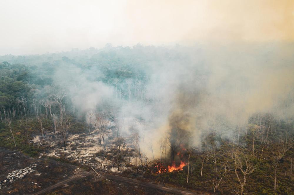 Forest Fires in the Amazon, Rondônia state, Brazil, (2019) Queimadas na Amazônia, 2019. Estado de Rondônia - Brasil