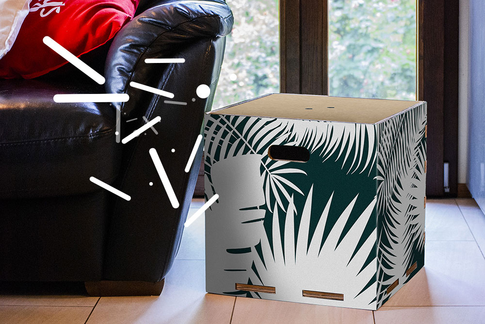Jungle-ambientata-1-icone